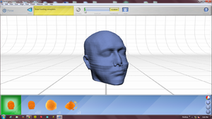 Head Model after being aligned